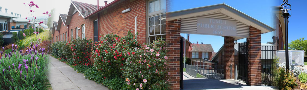 Tumut Public School buildings